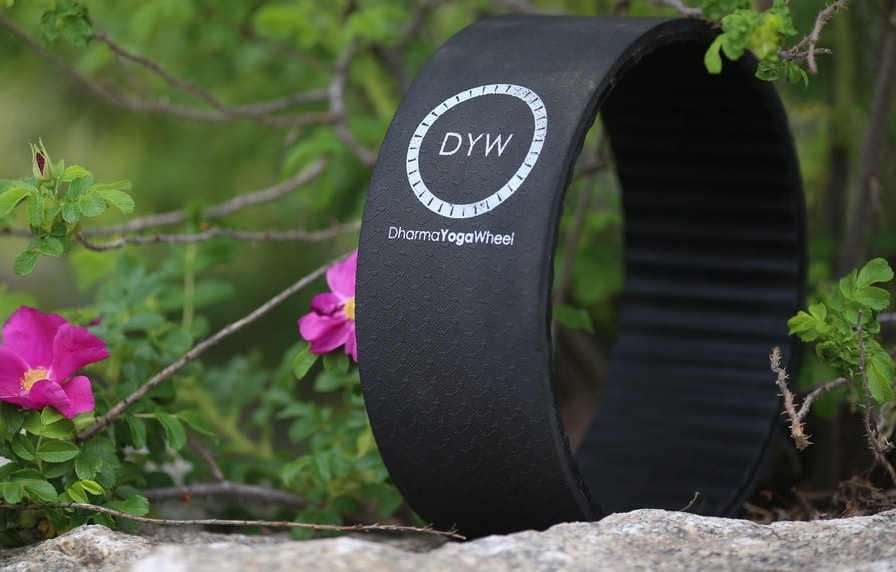 best yoga wheels dharma review